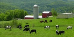 farm recruitment